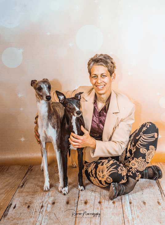 Alijamos whippet kennel